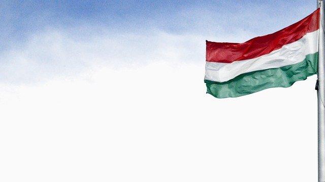 magyar fordító