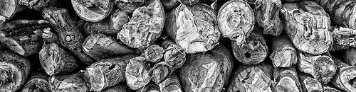 woodmarket.eu a fa anyagok szakertoje